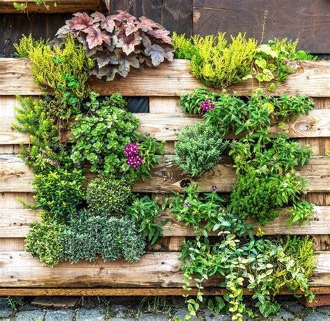 Ideas For Vertical Gardens 3 Great Ideas For Vertical Gardens Positivegardening