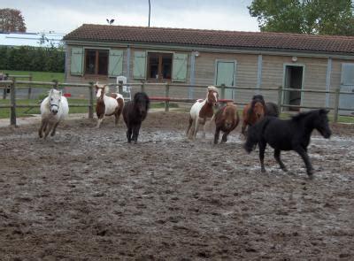 cavalerie du poney club des 4 chemins