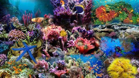 Fish Tank Textures   Joy Studio Design Gallery   Best Design