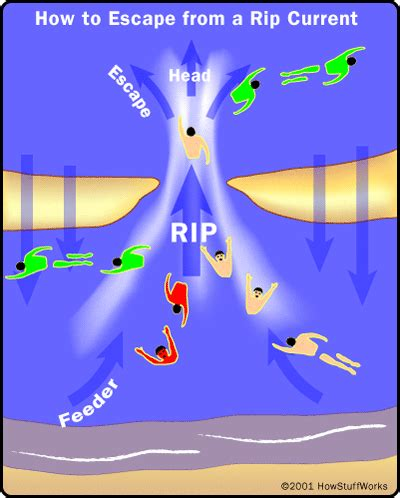 rip diagram 有关 rip current 以及遇到之后如何逃生 引用 人人分享 人人网