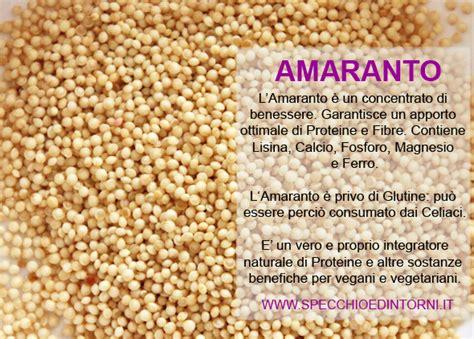 amaranto ricette cucina specchio e dintorni amaranto propriet 224 benefici e