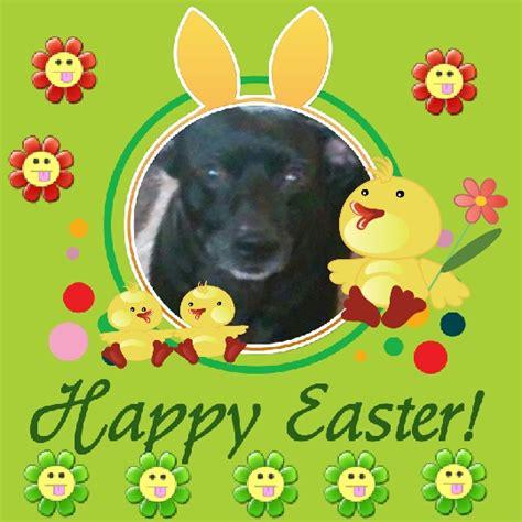 yankee doodle ringtone free easter bunny doobie doo free downloads wav mp3