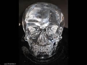 FOTO teschio di cristallo GRATIS PER SFONDI DESKTOP Gatti