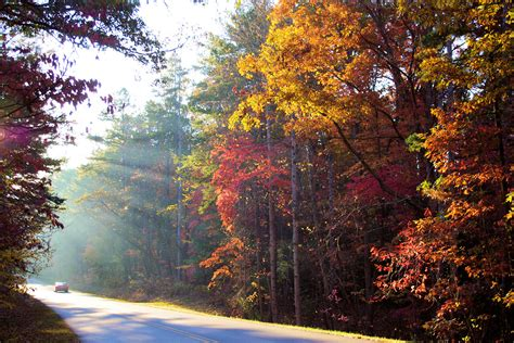 asheville fall colors asheville fall color report and photos asheville nc