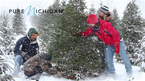 michigan christmas tree association pure michigan youtube