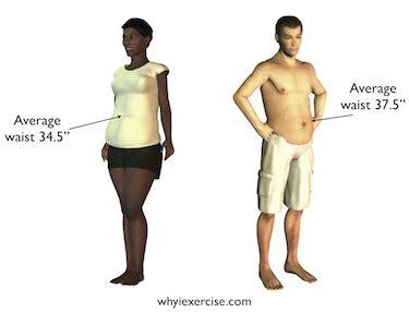 average male body average male waist size male models picture