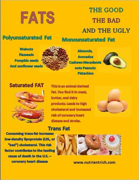 healthy fats source is there anything such as healthier nutrient rich