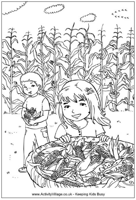 thanksgiving coloring pages activity village picking corn coloring page children in a corn field