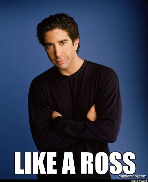 Ross Meme - ross is a boss oh that made me giggle pinterest