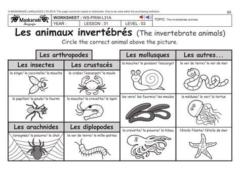 free printable worksheets vertebrates invertebrates french ks2 level 3 ks3 year 7 vertebrate and
