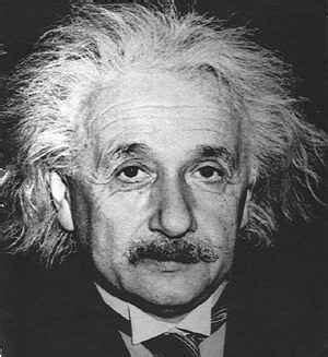 biography of albert einstein in brief opinions differ on the features of a well done scientific