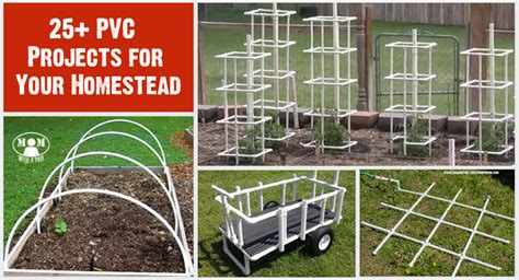 diy homestead projects 25 pvc projects for your homestead or backyard that you can do this weekend with a prep