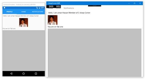 tabbed layout xamarin forms tabbed page in xamarin forms