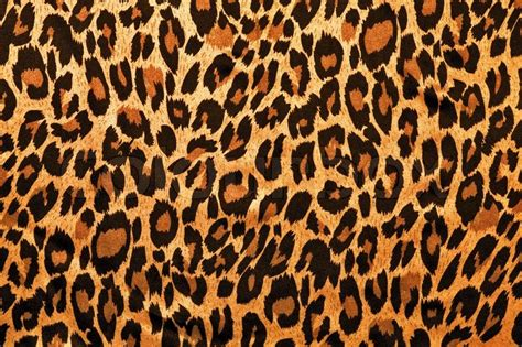 Leather Home Decor by Animal Leopard Texture Stock Photo Colourbox