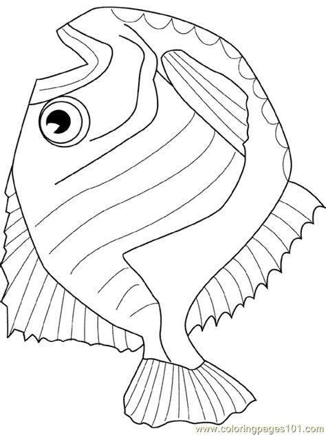 coloring page of hatchet coloring pages hatchet fish animals gt fishes free