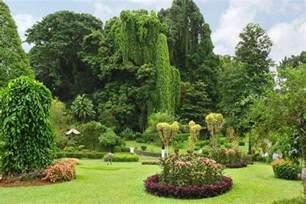 sri lanka botanischer garten botanische g 228 rten und gew 252 rzg 228 rten sri lanka