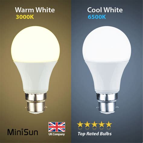Warm Led Light Bulbs Minisun 6w 10w Led 60w 100w Bc B22 Gls L Light Bulbs Warm Or Cool Day White Ebay