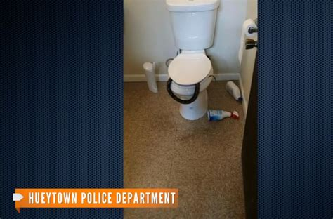 snake in bathroom snake found in bathroom scares construction workers aol news