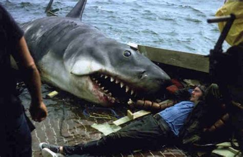 name of quint s boat in jaws 10 crazy facts you might not know about jaws ifc