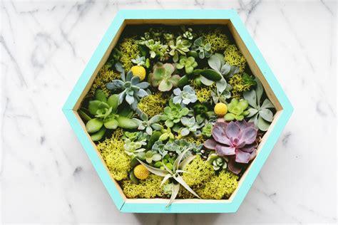 how to make a succulent planter diy succulent wall planter