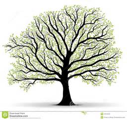 Tree Outline Green by Search Results For A Tree Outline With No Leaves Calendar 2015