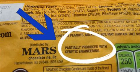 genetically modified foods label gmos what are they
