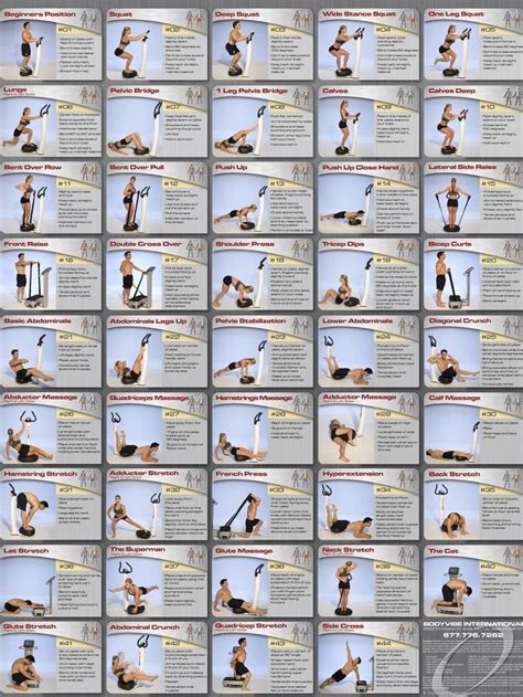 abdominal exercises chart quoteko health and nutration charts exercise