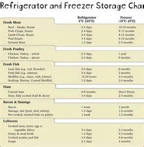 fridge freezer storage chart artistic sparks