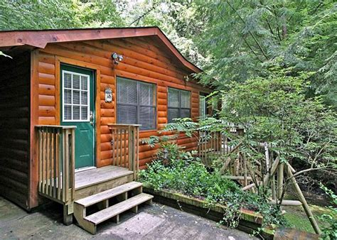 1 bedroom cabins in pigeon forge 22 best images about smoky mountain river cabins on rocking chairs beautiful and sleep