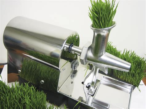 Juicer Wheatgrass vegetable specialty juicers zummo and zumex juicers new used juicers parts