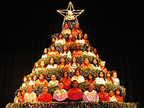 28 best singing christmas trees singing christmas tree