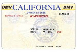 blank drivers license template 8 blank drivers license template psd images