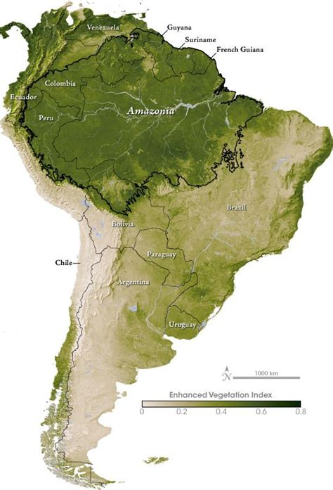 america rainforest map south america and the vegetation index by nasa