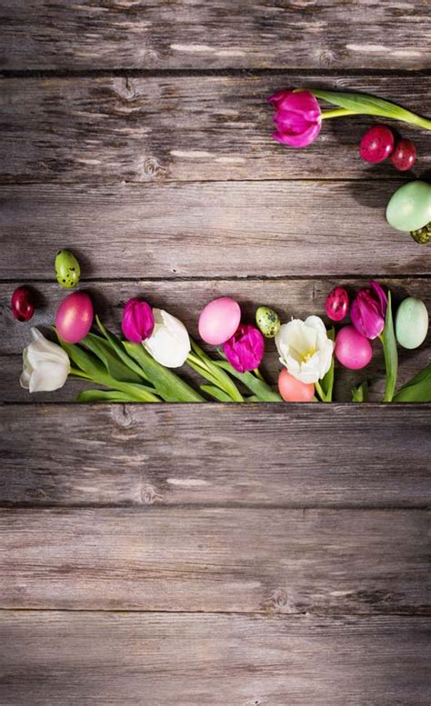 Bunga Dinding Tulip Spray popular tulip background buy cheap tulip background lots from china tulip background suppliers