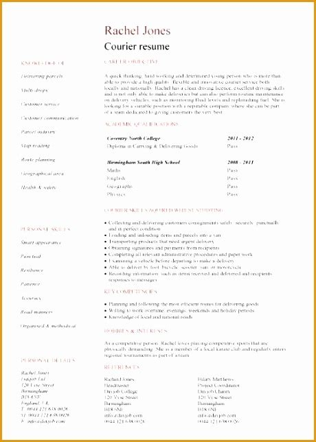6 self employed resume exle free sles exles