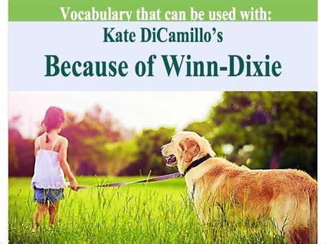 because of winn dixie book report ideas 20 best images about because of winn dixie unit on
