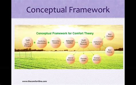 kolcaba s comfort theory