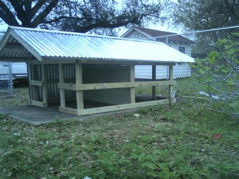 hunting dog houses very sturdy duplex dog house for under 300 00 all