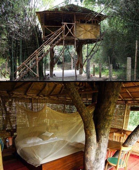 12 unusual and creative tree houses
