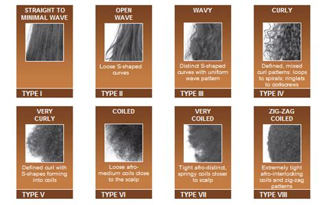 Types Of Hair Strands by Reaching For Higher Lengths Things