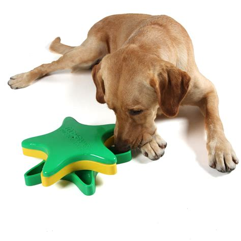 brain toys for dogs kyjen2