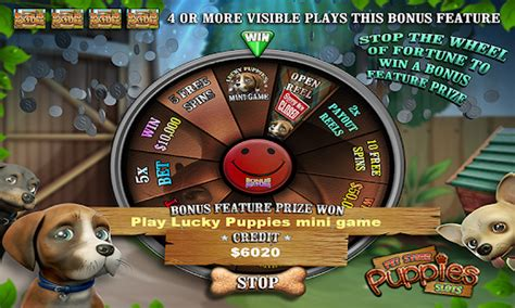 pet store where you can play with puppies pet store puppy vegas casino slots free android apps on play