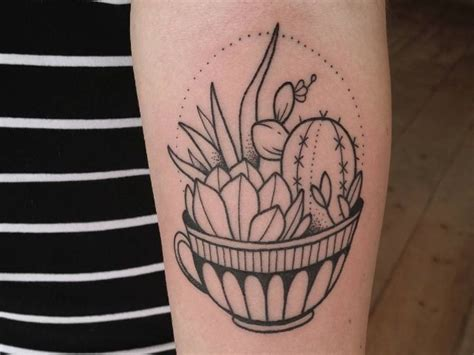 how to get tattoos off 25 best ideas about succulent on plant