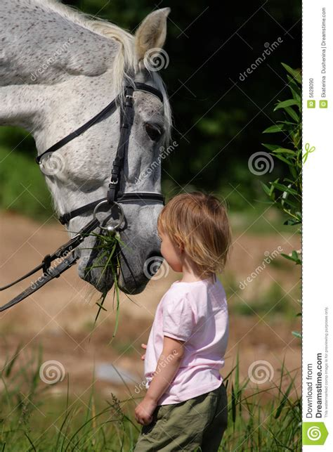 girl with horse head little girl and big horse s head eating grass stock photo