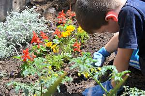 Planting A Flower Garden Flowers Tomatoes Cucumbers A Time Gardener