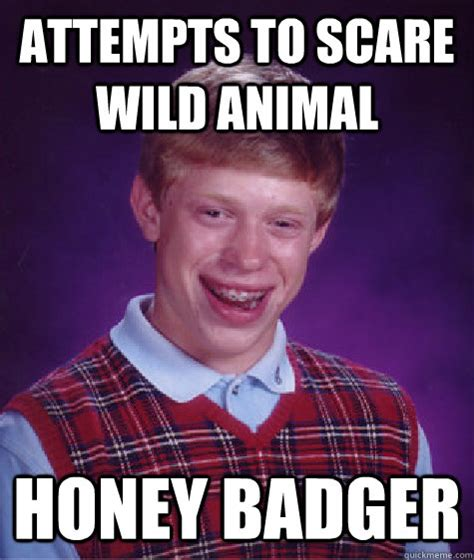 Give A Fuck Meme - attempts to scare wild animal honey badger bad luck