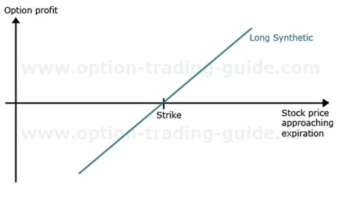 call option trading stock trading tutorial daily trader basics call put option trading social security numbers on