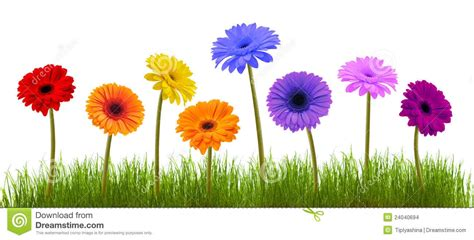 spring flower spring flowers clipart background clipartsgram com