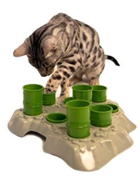 Cat Food Puzzle Feeder 1000 images about stuff for your cat s on