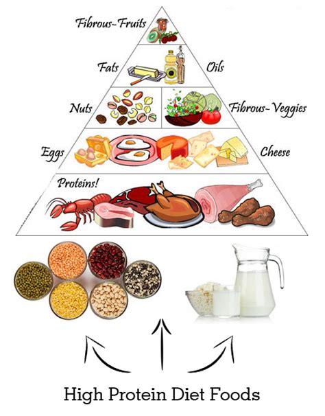 protein high foods high protein diet foods